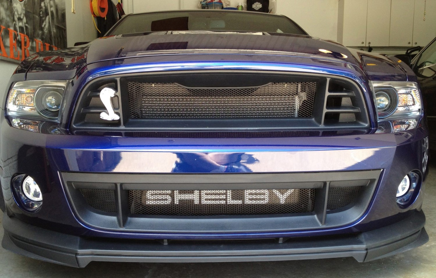 2013-14 Ford Mustang GT500 Mesh Grill Insert kit by customcargrills