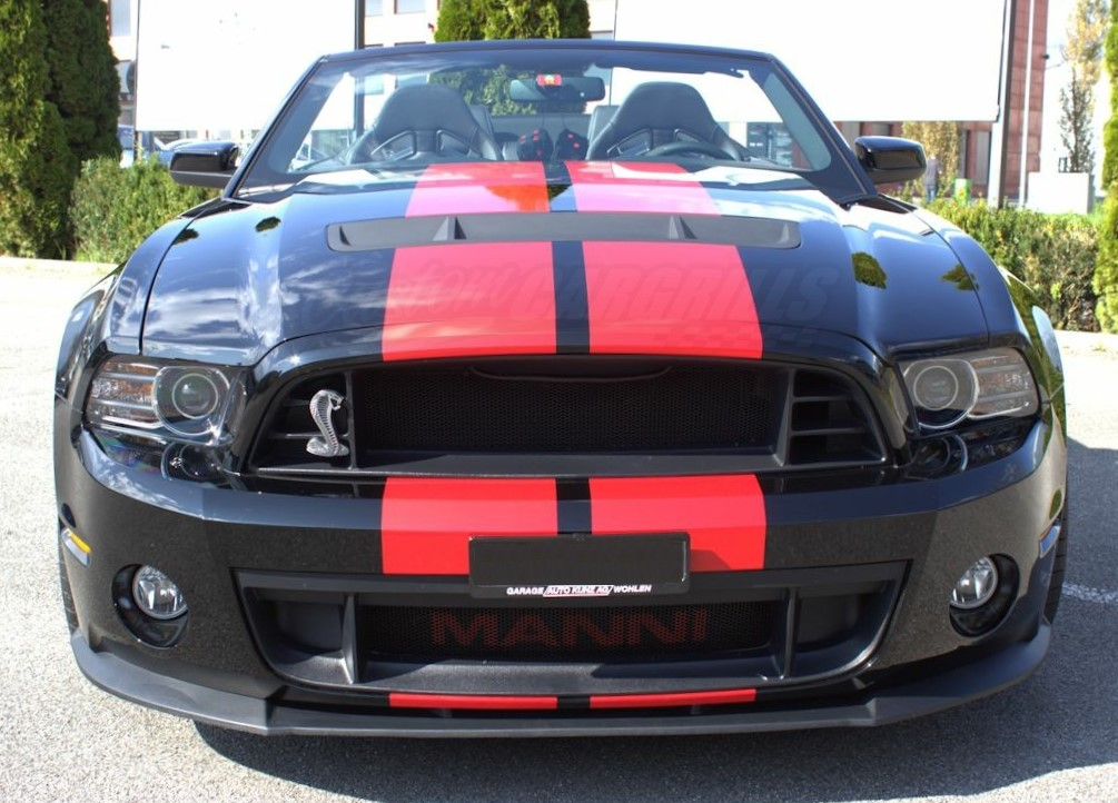 2013-2014 Ford Mustang GT500 Mesh Grill Insert kit by ...