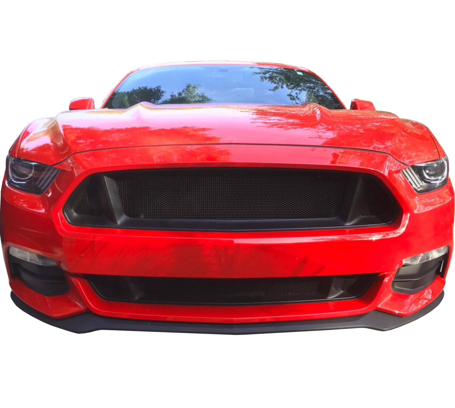 Details about ccg flat black grill grille delete mesh for 2015 17 ford mustang gt w adhesive